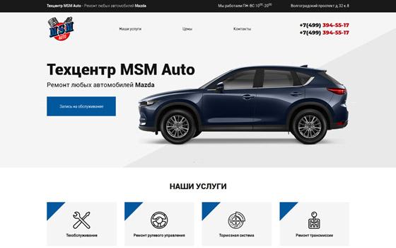 MSM Auto